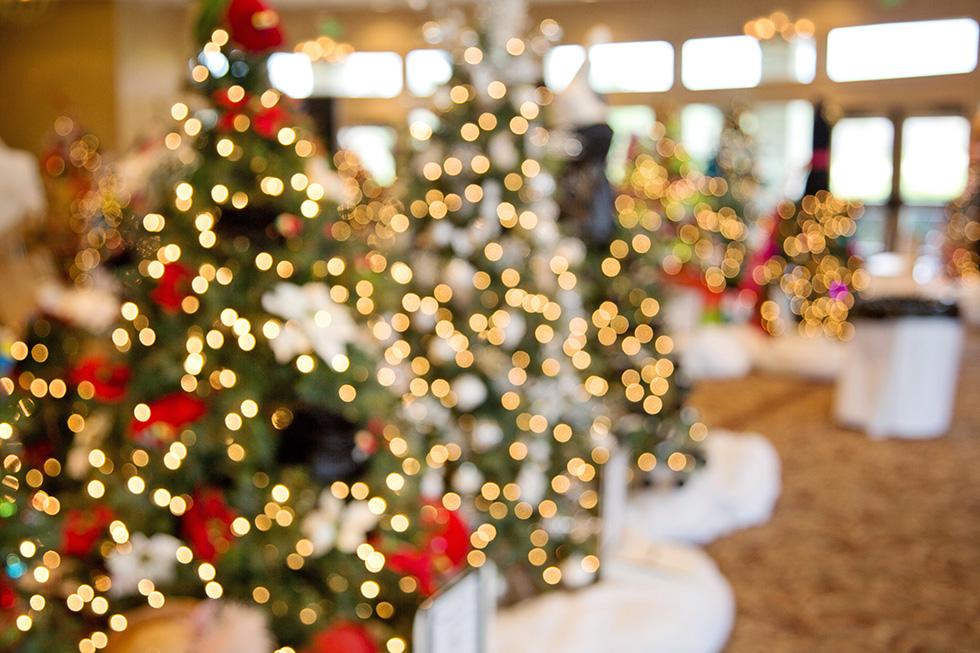 Kurzentrum Waren Arrangement Weihnachtsglanz