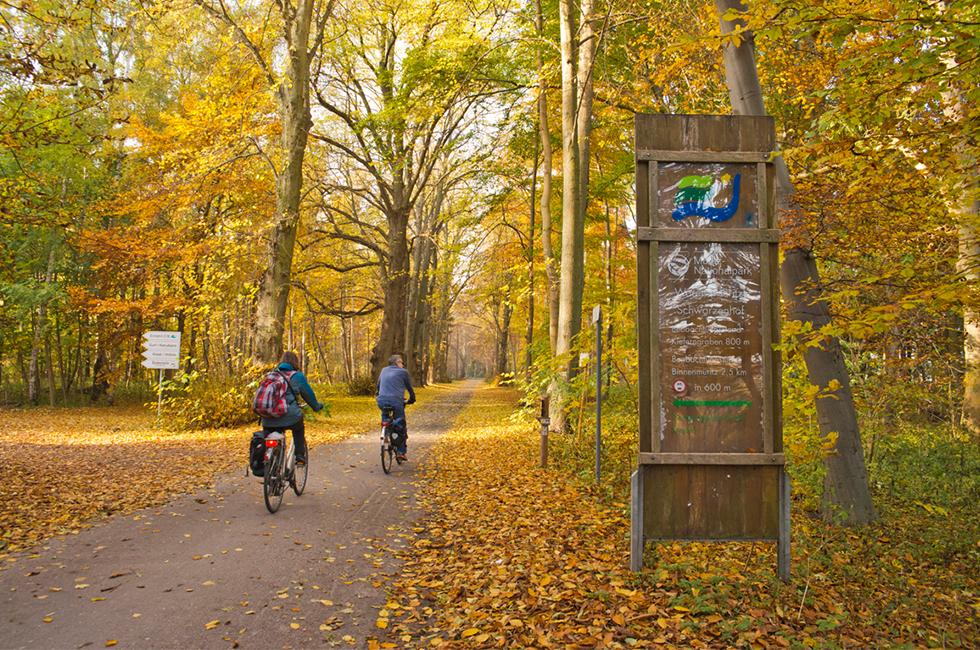 Müritz Nationalpark, © 1000seen, Drühl