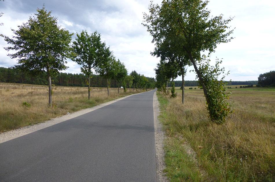 Radweg: Radtour an der Müritz