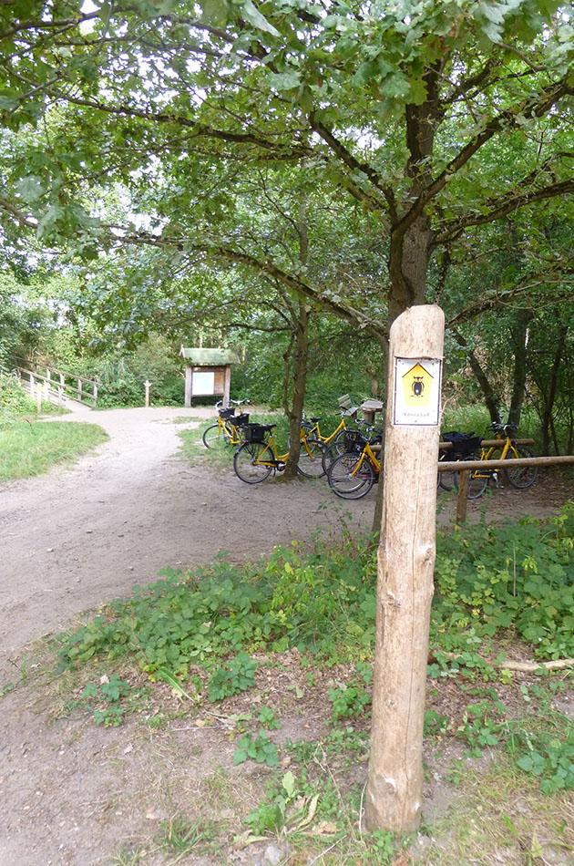Radtour an der Müritz